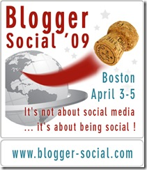 BS09 - blog badge